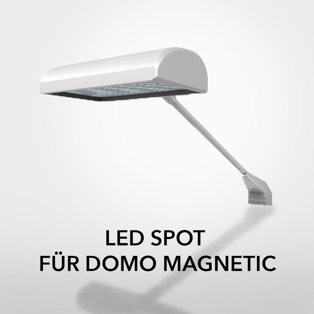 LED-Spot Domo